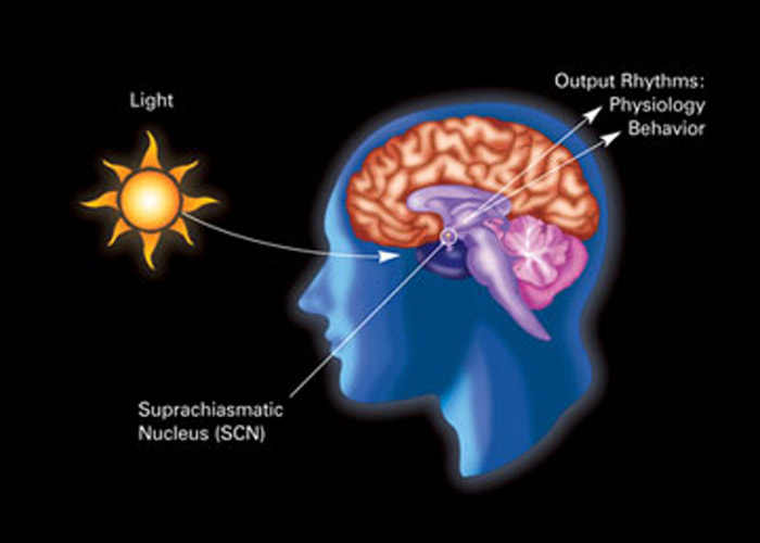 ChromaTherapyLight.com- Chroma = Color & Light + Therapy = Light is Energy + Light = Natural & Artificial Light, Free Lighting Education, Science of light and sight.